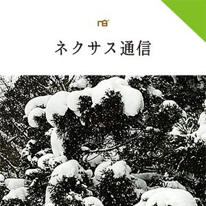 ネクサス通信 vol.44