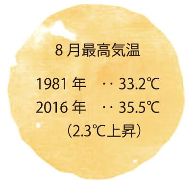 8月最高気温